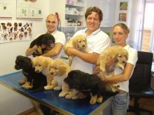 Ein herzliches Dankeschön an die Tierarztpraxis Dr. med. vet. Norbert Paulus und Team (mehr unter www.norbertpaulus.de).