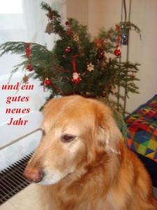 Wir wünschen allen ein gutes neues Jahr.