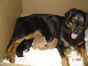 Asra ist sehr stolz auf ihre Kinder und läßt sie keine Minute aus den Augen.